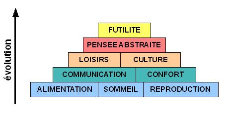 Pyramide de l'activité humaine en fonction de l'évolution.